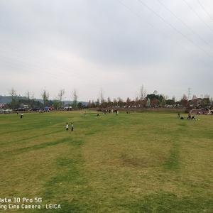 华蓥市小草坪
